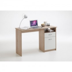 COMPUTER TABLE WITH DRAWER AND CABIN